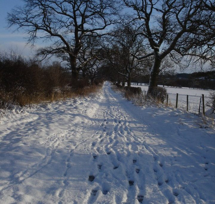Low Moor Lane in Winter
